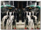 New aqua grinder at european springs & pressings quadruples output